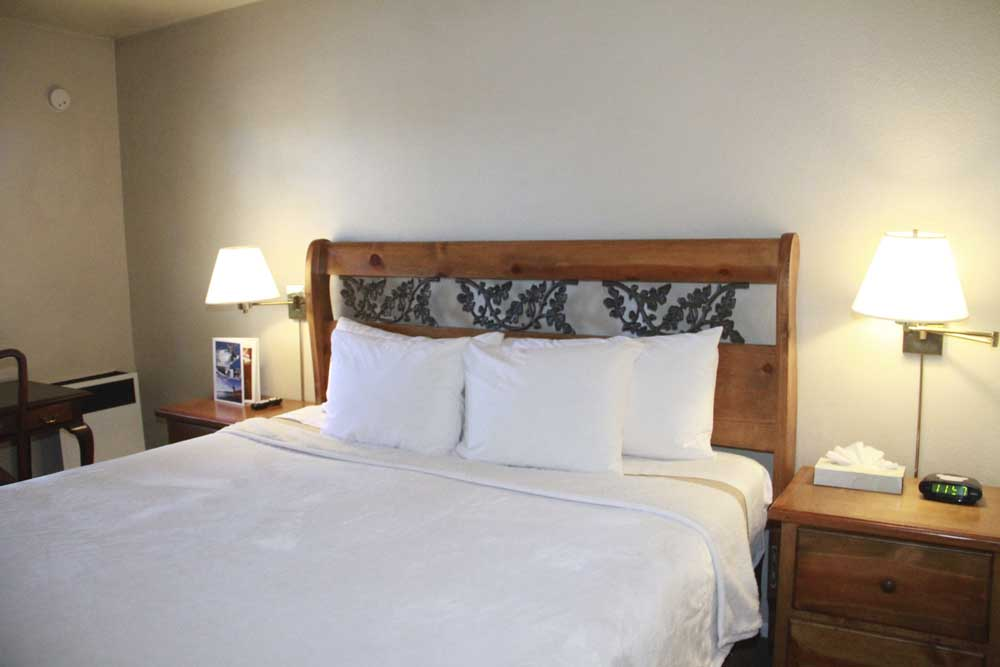 Hotel Room 1 King / Handicapped Accessible